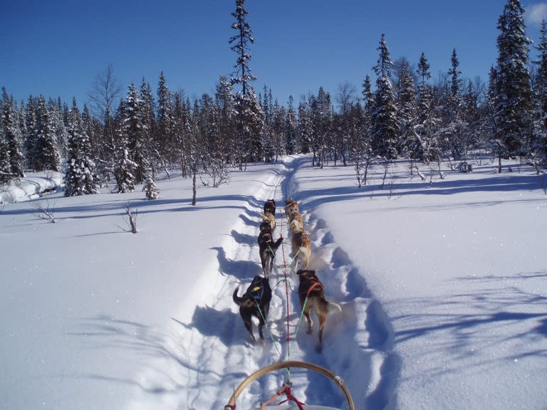 Swedish Roads - Peakpoints Adventure