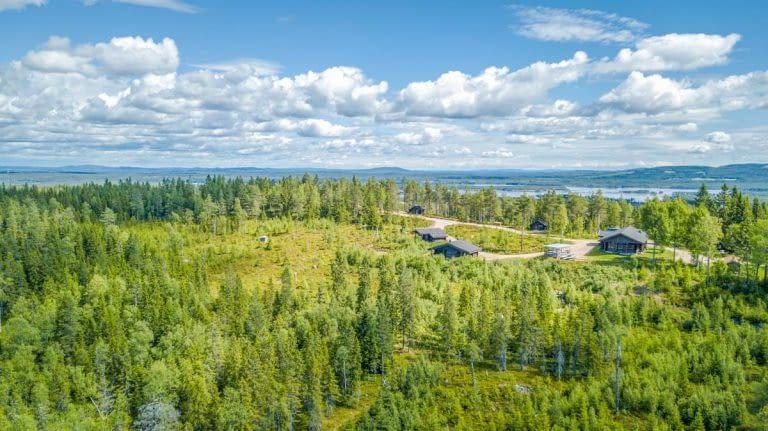 Swedish Roads - Fattigskogens Vildmarksby